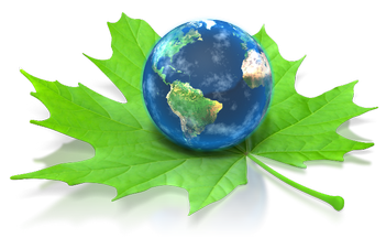 Green Energy Management